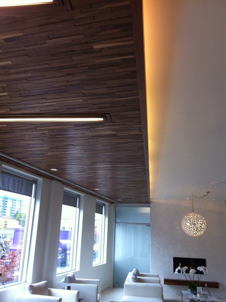 Project Skin MD Vancouver - Finium FriendlyWall Ceiling
