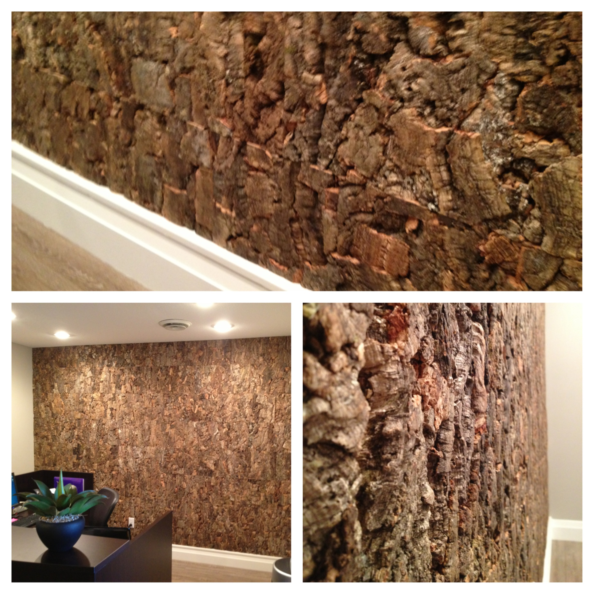 Outer burl cork feature wall jb interior designs 2 the for Cork flooring on walls